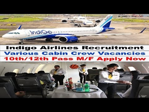 Job Vacancy in Indigo Airlines | Private Jobs | 10th -12th pass apply Now !