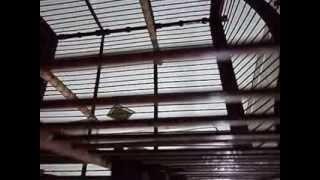 Download Video ciblek Gang Arba MP3 3GP MP4