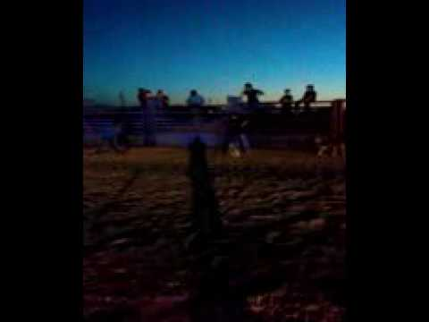 Oscar castillo steer riding