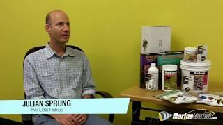 Julian Sprung Q&A: Part 4