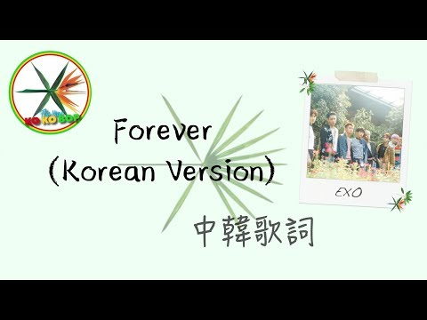 Forever (Korean Version) -EXO 認聲 中文歌詞