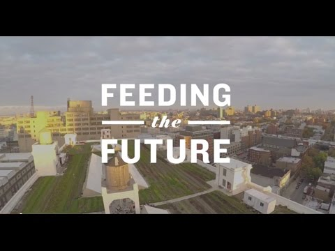 FEEDING THE FUTURE New York City's Experiment in Urban Agriculture | Overview