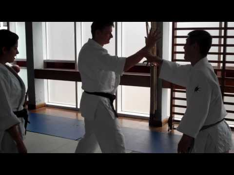 No 6 Inoue Yoshiomi Sensei at the British Aikido Association Summer School 2016
