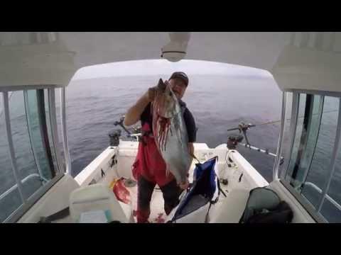 Bluefin Tuna Fishing, Monterey Bay, CA near Santa Cruz.   10/17/2015