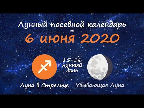 [6 июня 2020] Лунный посевной календарь огородника-садовода