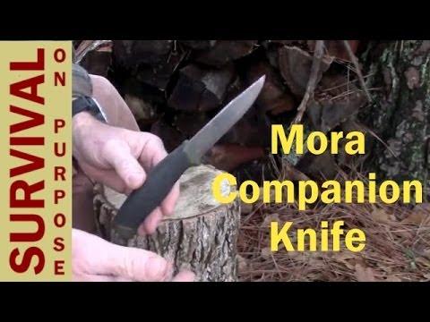 Mora Companion Test - Survival on a Shoestring