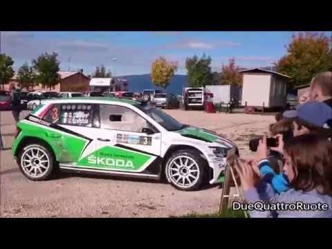 Umberto Scandola Su Skoda Fabia R5 Al Rally Due Valli 2015 Ad Erbezzo (Vr)