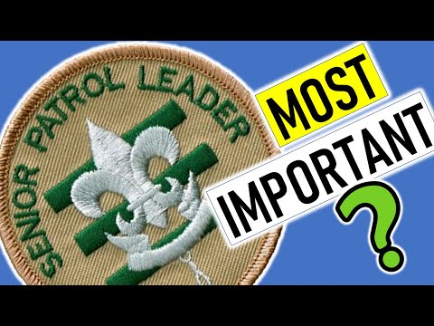 Most Important Scouting Job - Eagle Scout October Status Update