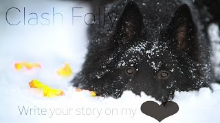 Write your story on my ♡ .:Clash Folly:.