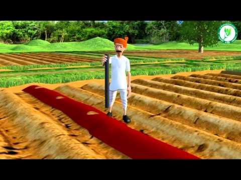 Kannada How to do plastic mulching