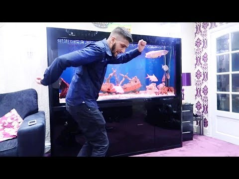 HE PROMISED TO DANCE FOR YOU ALL !!!! [VLOG]