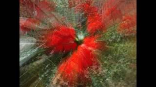 Всем мамам стихи монаха Лаврентия Тихоно Задонский монастырь исполнение и видео Татьяна Талызина(Песня