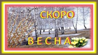 Скоро весна С первым днём весны! 1 марта - начало весны. Поёт Юлия Шатунова