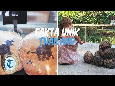 5-fakta-unik-thailand-ini-jadi-daya-tarik-bagi-turis,-termasuk-suvenir-dari-kotoran-gajah