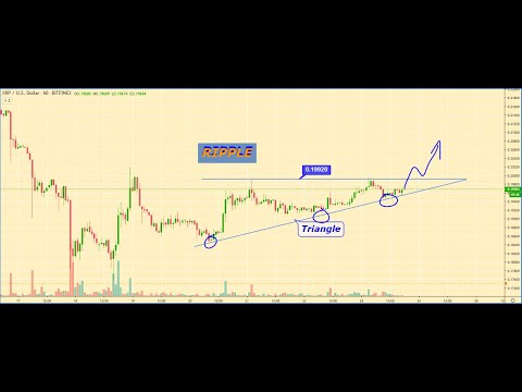 BITCOIN Price Analytics, BITCOIN Prediction, Cryptocurrency Market Overview For 12.23.2019