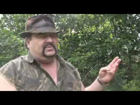 """Bigfoot """"Knobby"""" spotted in Cleveland County, North Carolina?"""