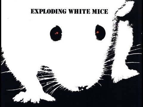 Exploding White Mice Live at the Producers Bar