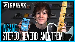THE BEST REVERB AND TREMOLO PEDAL EVER?! Hydra - Keeley Electronics Demo