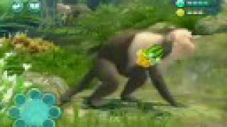 Zoo Hospital Wii trailer - Torus Games