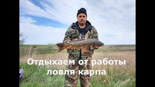 Поездка на рыбалку ловля карпа весной