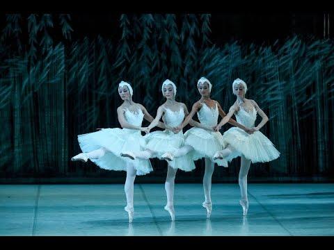 Белый акт. Лебединое озеро / Swan Lake. White Act