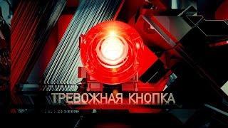 Тревожная кнопка   Выпуск 26 от 22.02.2019
