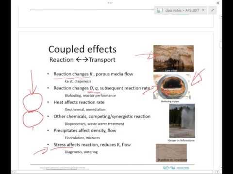 APS 9 Reactive Transport