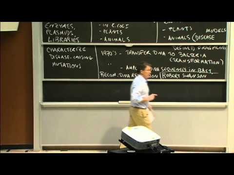 Overview of Recombinant DNA   MIT 7.01SC Fundamentals of Biology