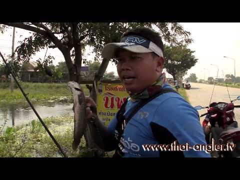 Angler Trip พิเศษ : เพื่อชีวิตติดล้อ มัน ฮา สนุก