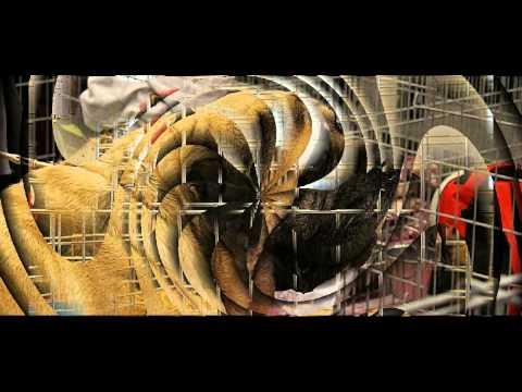 SALON-2013-Pte-VERSAILLES-ANIMAUX.avi
