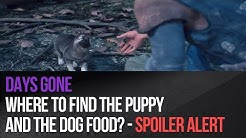 Days Gone - Where to find the puppy and the dog food? - Spoiler Alert