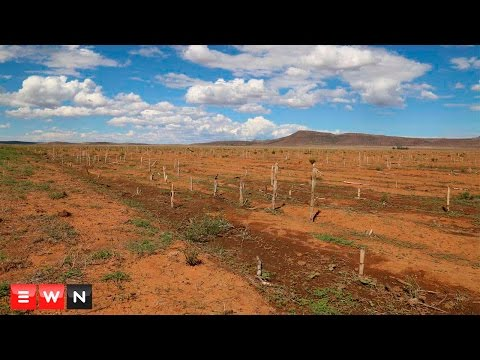 SA economy suffers as drought continues