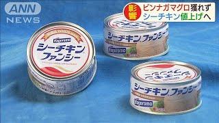 「シーチキン」値上げへ ビンナガマグロ不漁の影響(19/09/17)