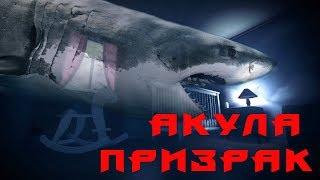 [О фильме] Акула - призрак