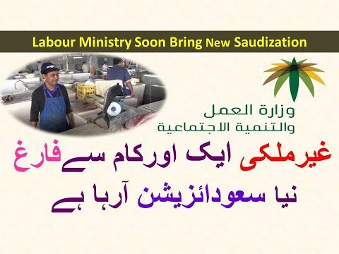Labour Ministry Saudi next Saudization will be in Phishing Sector Bad News 4 Foreign Fisher catcher
