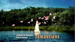 Televisa  Bicentenario ☆Estado de Tamaulipas☆ HD