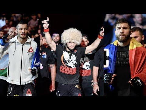 Зарплаты UFC Копенгаген, следующий бой Хабиба Нурмагомедова: когда, где? Боец уволен из UFC