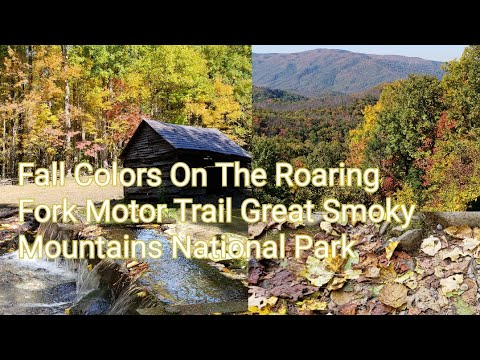 Fall On The Roaring Fork Motor Nature Trail Great Smoky Mountains National Park