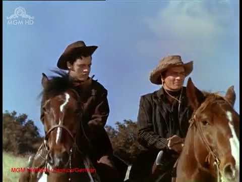 Fünf Revolver gehen nach Westen 1955   John Lund, Dorothy Malone