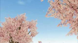 Sunrise And  Cherry Blossom In Mabinogi