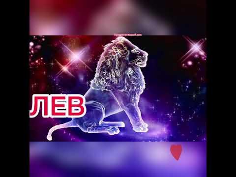 ЛЕВ гороскоп с 23 ноября по 29 ноября 2020🌸гороскоп лев на неделю🌸гороскоп лев на сегодня🌸