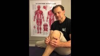 Hygiène Bio-Mécanique: auto-massage mollets avec les mains