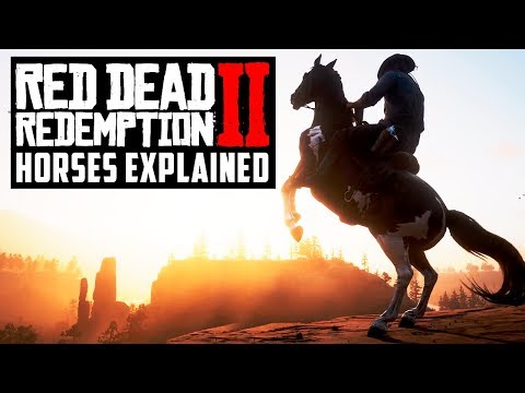 Red Dead Redemption 2 All NEW Horse Info: Breeds, Stats, Skills, Customization & How To Purchase