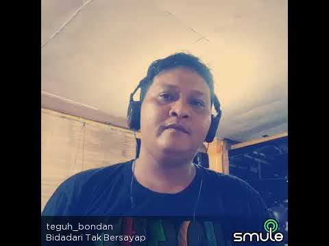 Teguh Bondan - Bidadari Tak Bersayap (cover by Anji)