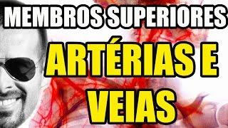 É principal chamada artéria a