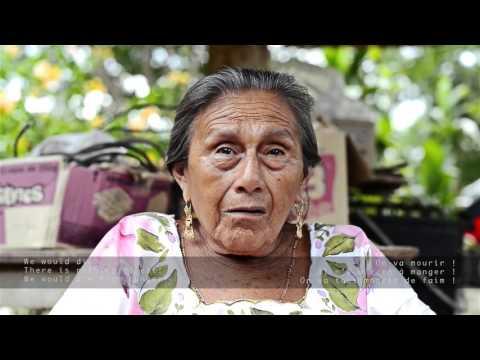 Teene´  Maayaen -  I am Mayan
