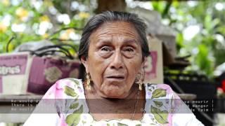 Teene´  Maayaen –  I am Mayan
