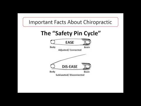 The Safety Pin Cycle in Grapevine - Dr. Taeho Lee