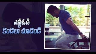 Jr NTR New Look For Trivikram Movie | Pooja Hegde | 2018 Latest Telugu Movie News | Telugu Cinema