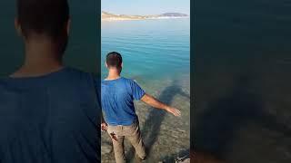 Cırlaz av bayi Adıyaman Atatürk barajı 60 kg rekor balık spin turna avı(3)
